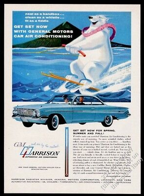 1961 polar bear waterskiing cute art GM Harrison AC vintage print ad