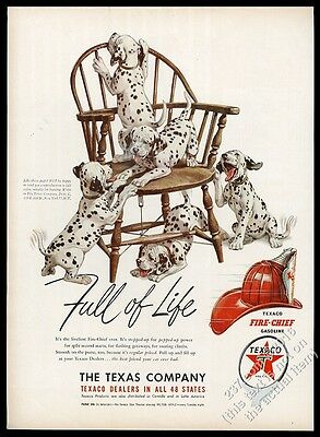 1950 Dalmatian puppy dogs playing on chair color art Texaco oil vintage print ad