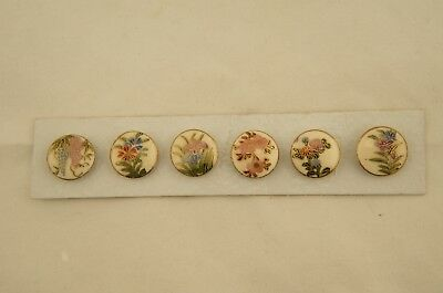 Antique Japanese Meiji Satsuma set 6 painted mixed floral 18.5mm buttons on card