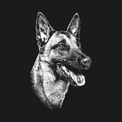 "Belgian Malinois 5"" Clear Gloss Decal Sticker Shepherd Dog K9 Window Print Z1U"