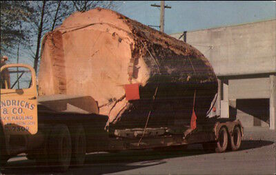 Logging Industry Huge Log on Truck Tractor Trailer Washington or Oregon c1950