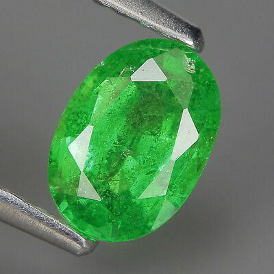 1.02 Ct Natural Africa Green TSAVORITE GARNET Oval Gem @ See Video !!