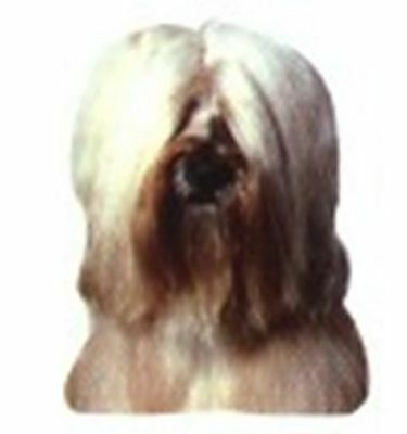 Car Window TIBETAN TERRIER Dog Breed Decal 2-sided! CLEARANCE