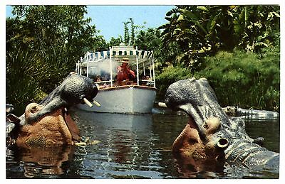 1960s DISNEYLAND ADVENTURELAND JUNGLE CRUISE with PAIR of HIPPOS~UNUSED POSTCARD