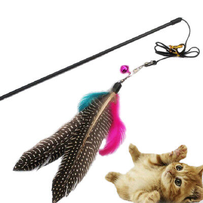 Great Kitten Play Interactive Fun Toy Cat Teaser Wand Pet Colorful Feather 'Bell