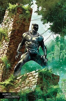 Black Panther #170 Checchetto Young Guns Variant Marvel Legacy X-Men 2018 030118