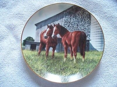 The Yearlings Donald Patterson Danbury Mint Art Horse Plate