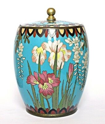 Fine Antique Cloisonne Lidded Jar / Box, Irises And Flowers On Turquoise Ground
