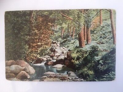 Glenmalure   Co Wicklow   UNUSED  Early 1900s  VERY CLEAN