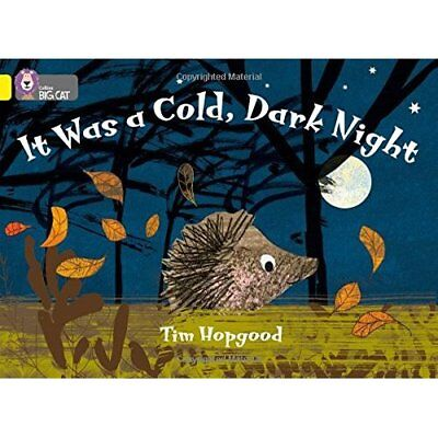 It Was a Cold Dark Night: Band 3/Yellow Phase 8, Bk 11  - Paperback NEW Hopgood,