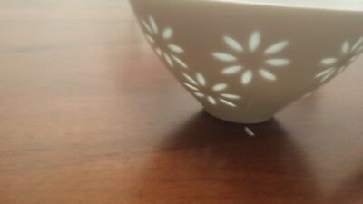 Opaque and Translucent Rice Bowl with Spoon Japanese Flower Pattern