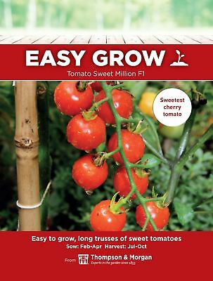 Thompson & Morgan Easygrow - Tomato Sweet Million F1 - 5 Seeds