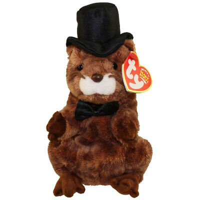 TY Beanie Baby - PUNXSUTAWNEY PHIL 2004 the Groundhog (6.5 inch) - MWMTs