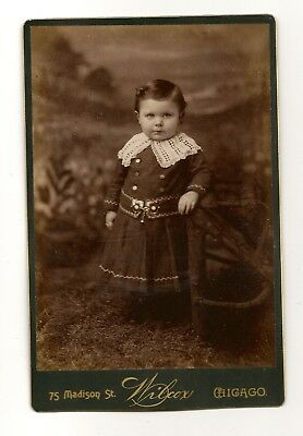 Cabinet Card Beautiful Young Child Wearing a Wonderful Dress Great Face Chicago