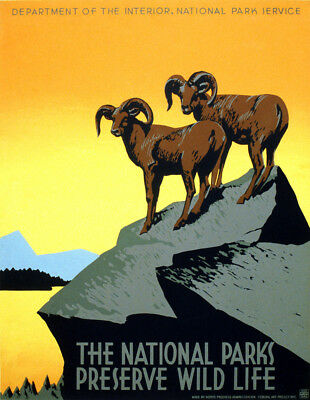 "Vintage National Parks WIldlife Poster CANVAS PRINT USA 24""x16"""