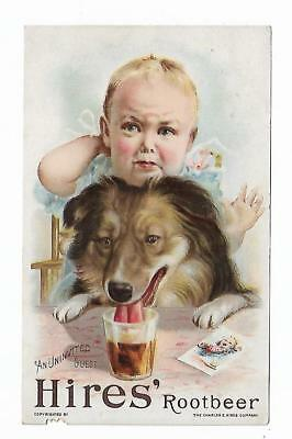 Old Trade Card Hires Root Beer Philadelphia PA Uninvited Guest Baby Dog Drinking