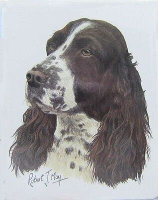 Retired Dog Breed SPRINGER SPANIEL Vinyl Softcover Address Book by Robert May