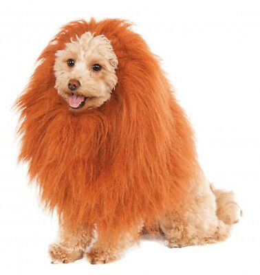 Deluxe Lion's Mane - Pet Cosume Accessory - One Size fnt