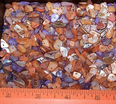 LOT Of 55 Mother Of Pearl MOP Small-Medium Chip BEADS