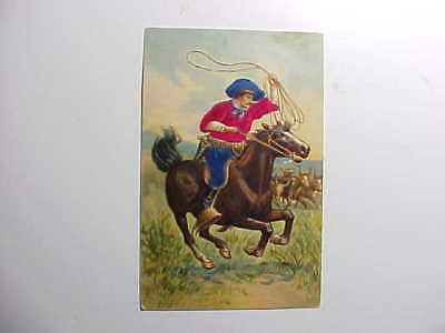 1910 Wild West Cowboy With Real Silk Clothing On Horse W/ Lasso  Vg+