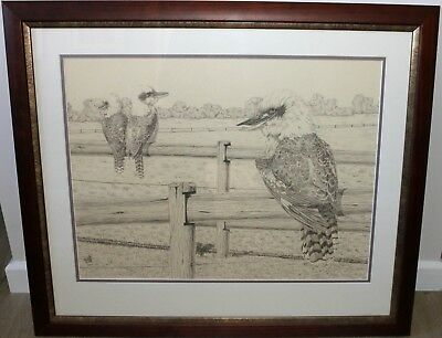 Original Hand Drawn Kookaburras