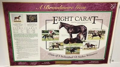 Champion Broodmare Eight Carat Limited Edition Tribute Poster - Dam Of Octagonal