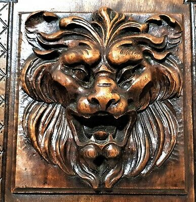 Gothic roaring lion panel Antique french wood carving architectural salvage a
