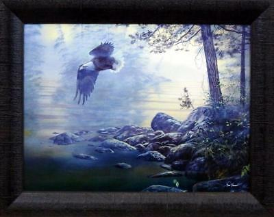 Jim Hansel Majesty Eagle Studio Canvas Framed Print- 19 x 15