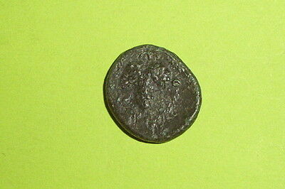 LOCRIS OPUNTII 338 BC Authentic Ancient GREEK COIN grapes Athena war goddess G