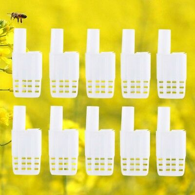 Lot 10Pcs Plastic Queen Bee Cages Isolator Rearing Beekeeper Beekeeping Tools UK