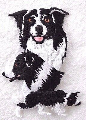 ***embroidered*** Iron On Patch Dog Detailed Top Quality Border Collie Free Ship