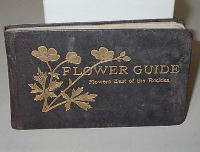 Vintage 1913 Flower Guide Wild Flowers East Of The Rockies By Chester Reed