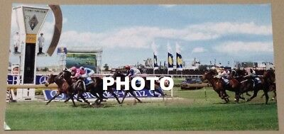 1997 Group 1 Mercedes Classic / The Bmw Photo - Octagonal's Last Career Win