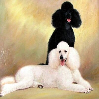 Vintage STANDARD POODLE Oil Painting Black and White Poodles Large Dog