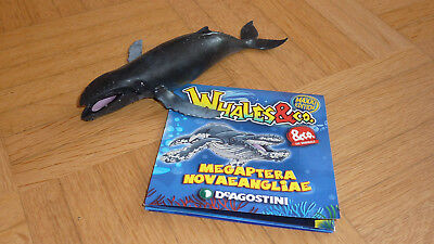 DeAgostini Whales & und Co. Maxxi Edition Nr. 7 Buckelwal - NEU mit Miniposter