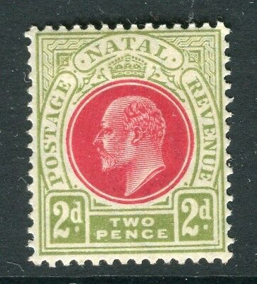 SOUTH AFRICA NATAL; 1904 early Ed VII issue fine Mint hinged 2d. value