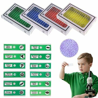 48 kids microscope slides entomology Plastic Prepared Microscope Slides Sample