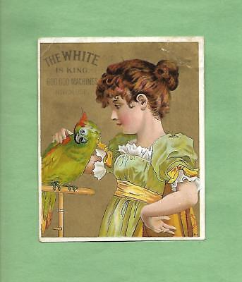 GIRL PETS PARROT On WHITE SEWING MACHINES Victorian Trade Card--LAKE MILLS, WI