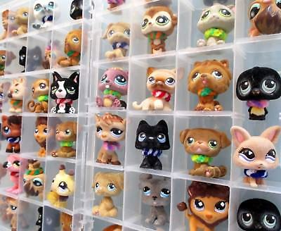 Littlest Pet Shop Lot 5 Random Blemished Fluffy Fuzzy Dog Cat Horse with Collars