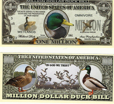 Dollar Enten, Ducks