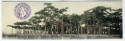 Pine Trees of KARASAKI JAPAN Double Fold Out Postcard c 1910 Hand Tinted Colored