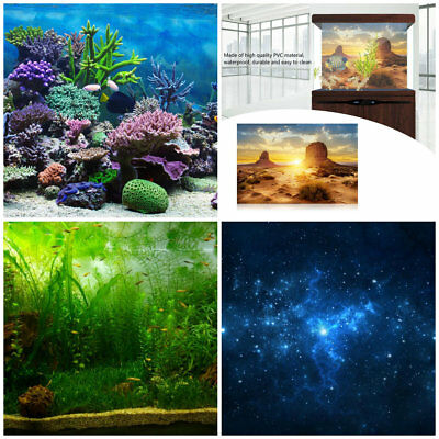 4 Styles Aquarium Fish Tank Background Poster PVC Adhesive Decorations Paper