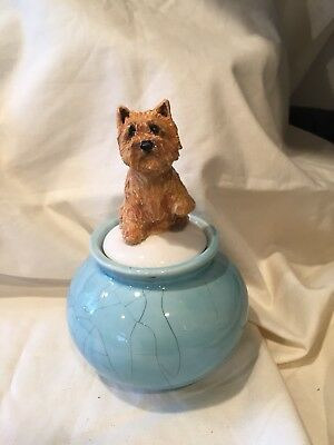 Norwich Terrier Hand Sculpted Kiln Fired Norwich Jar By  Darci