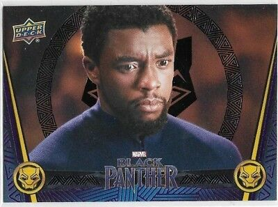 World is Changing Black Parallel #55 - 2018 Black Panther