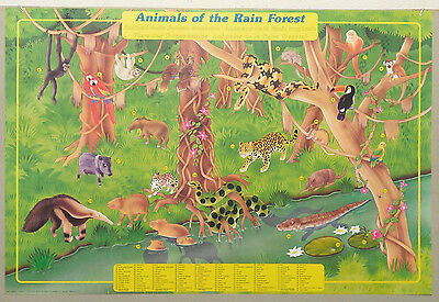 (Prl) 1991 Animali Foresta Tropicale Vintage Affiche Print Art Poster Collection