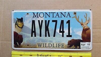 License Plate, Montana, Wildlife, Wolf, Bear, Elk, Bison, AYK 741