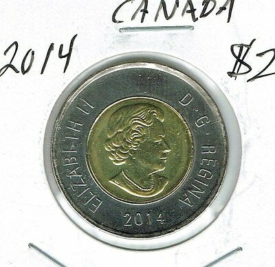 2014 Canadian Brilliant Uncirculated $2 Toonie coin!
