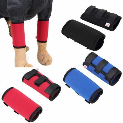 Pet Dog Front Leg Brace Paw Compression Wraps With Protect Wounds Brace Fixator
