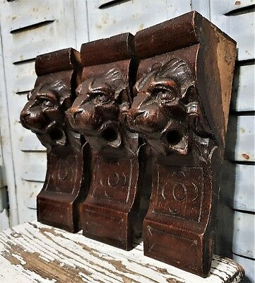 THREE GOTHIC LION CORBEL BRACKET Antique french carved wood salvaged sculpture