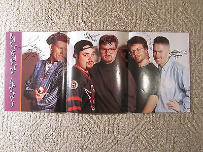 Large 33x14 autographed BARENAKED LADIES picture -SIP C/W COA vintage 1994 WOW
